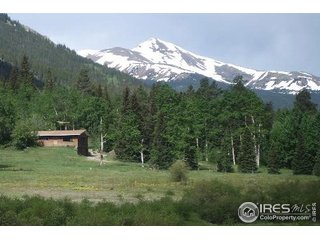 2182 Silver Valley Rd Silver Plume, CO 80476