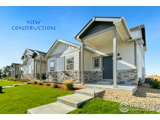 298 E Chestnut St 4 Windsor, CO 80550