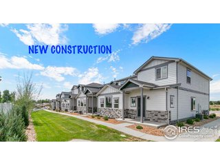 294 E Chestnut St 4 Windsor, CO 80550