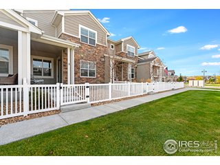 2165 Montauk Ln 2 Windsor, CO 80550