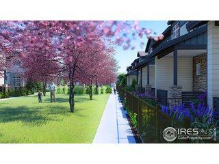 4153 North Park Dr 102 Loveland, CO 80538